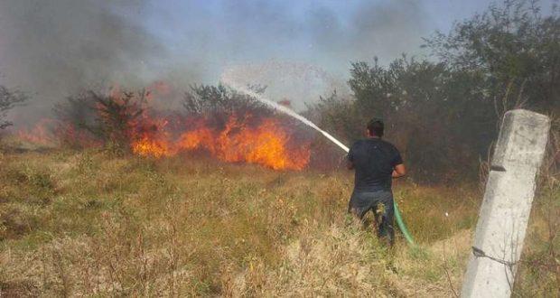 En aumento, incendios forestales en Veracruz