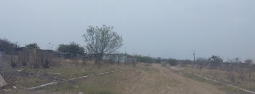 Presentarán propuesta para regresar la Policía Rural en Altamira y frenar el robo de ganado