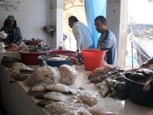 Reforma Fiscal provoca el cierre de  5 locales en el Mercado de Pescados y Mariscos la Puntilla