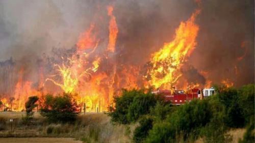 Coahuilenses apoyarán combate de incendio en Canadá