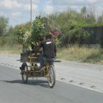 Ciclistas en peligro y sin consideración vial